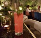 Best cocktail bars in Rome - prices & new openings